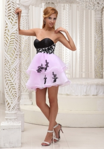 Homecoming Cocktail Dress For 2013 Pink Organza