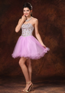 Lavender Beaded Short A-line Prom Homecoming Gowns