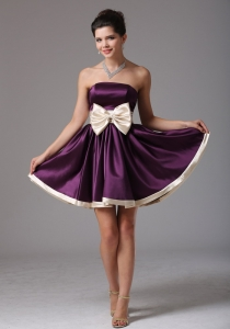 Beautiful Dark Purple Graduation Holiday Dress Sash