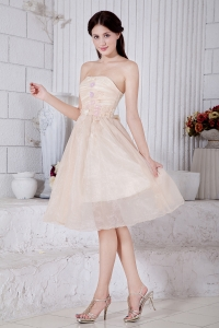 Champagne Strapless Organza Graduation Homecoming