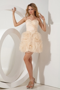 Champagne Prom Homecoming Dress A-line Princess Straps