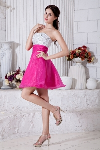Hot Pink Graduation Homecoming Dress Sweetheart Organza