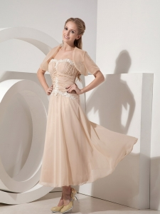 Champagne Chiffon Appliques Mother of the Bride Dress