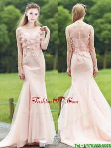 Luxurious See Through Light Pink Mermaid Mother Groom Dress with Brush Train