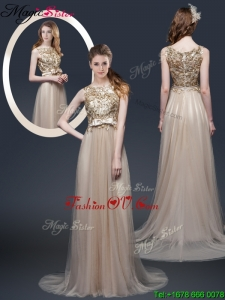 Luxurious Brush Train Prom Dresses with Appliques and Bowknot