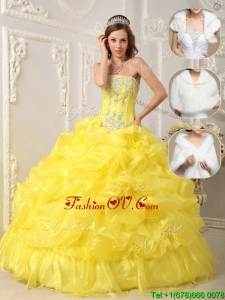 Winter Perfect Strapless Quinceanera Gowns with Beading and Ruffles