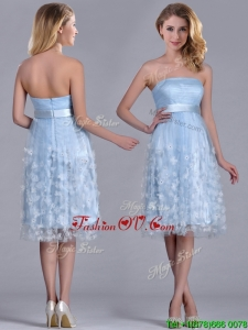 Gorgeous Empire Tea Length Applique Tulle Dresses Dress in Light Blue