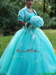 Wonderful Beaded and Applique Floor Length Quinceanera Dress with Puffy Skirt