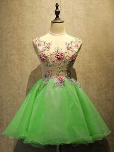 Great Sleeveless Organza Lace Up Prom Gown for Prom and Party