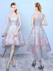 Lovely Organza Sleeveless High Low Quinceanera Court Dresses and Embroidery
