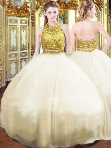 Hot Sale Sleeveless Floor Length Beading Zipper Quinceanera Gowns with Champagne