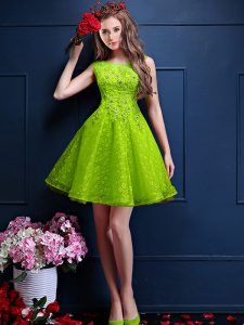 Sleeveless Tulle Knee Length Lace Up Damas Dress in Green with Beading and Lace