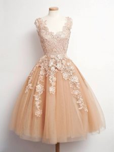 Vintage Champagne A-line Lace Quinceanera Court of Honor Dress Lace Up Tulle Sleeveless Knee Length