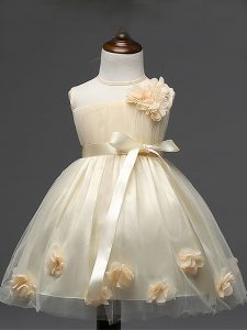 Modern Ball Gowns Toddler Flower Girl Dress Champagne Scoop Tulle Sleeveless Knee Length Zipper