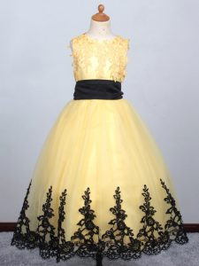 Tulle Sleeveless Floor Length Party Dress and Appliques