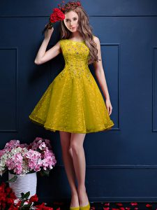 Bateau Sleeveless Lace Up Quinceanera Court Dresses Yellow Tulle