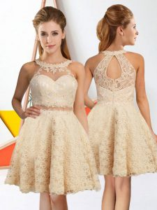 Dynamic Sleeveless Lace Knee Length Zipper Quinceanera Court of Honor Dress in Champagne with Lace