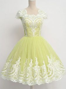 Smart Yellow Green A-line Tulle Square Cap Sleeves Lace Knee Length Zipper Quinceanera Court Dresses
