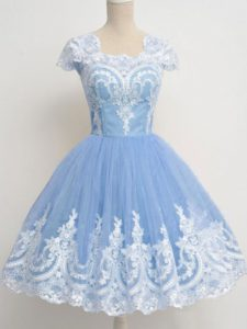 Light Blue A-line Lace Damas Dress Zipper Tulle Cap Sleeves Knee Length