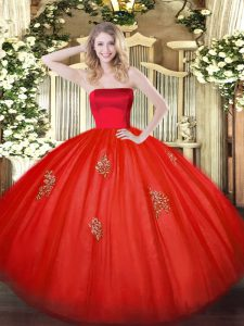 Sleeveless Appliques Zipper Quinceanera Gowns