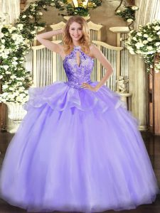 Custom Fit Organza Sleeveless Floor Length 15th Birthday Dress and Beading