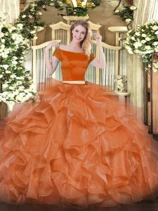 Vintage Organza Short Sleeves Floor Length Quinceanera Gown and Appliques and Ruffles