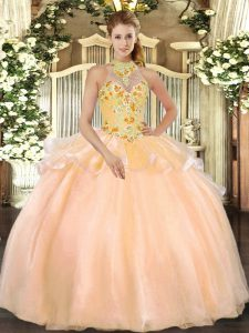 Sweet Halter Top Sleeveless Lace Up 15 Quinceanera Dress Peach Organza