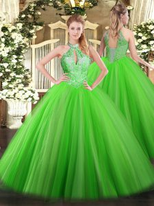 Best Halter Top Sleeveless Lace Up Quince Ball Gowns Tulle