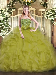 Hot Sale Organza Sleeveless Floor Length Quinceanera Gown and Beading and Ruffles