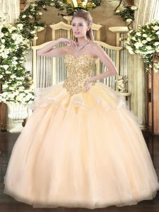 Stunning Champagne Sleeveless Organza Lace Up Quinceanera Gowns for Sweet 16 and Quinceanera