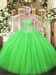 Charming Appliques Quinceanera Dress Lace Up Sleeveless Floor Length