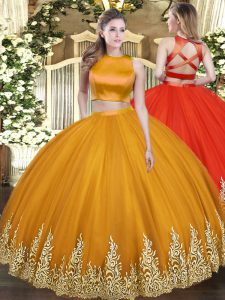 Admirable Orange Criss Cross Quinceanera Dresses Appliques Sleeveless Floor Length