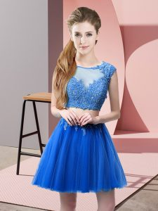 Top Selling Blue Sleeveless Mini Length Appliques Zipper