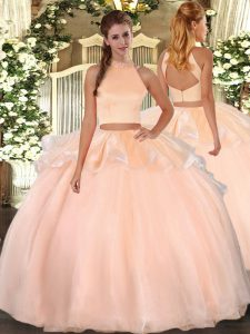 Sleeveless Organza Floor Length Backless Sweet 16 Dresses in Peach with Beading