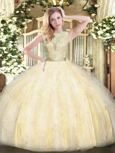 Organza Sleeveless Floor Length Vestidos de Quinceanera and Lace and Ruffles