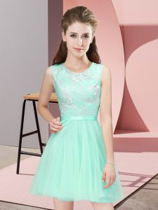 Scoop Sleeveless Side Zipper Damas Dress Apple Green Tulle