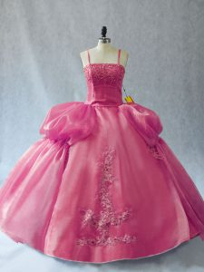 Straps Sleeveless Ball Gown Prom Dress Floor Length Appliques Pink Organza