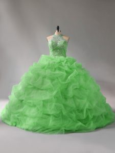Sleeveless Organza Court Train Lace Up Quinceanera Gown for Sweet 16 and Quinceanera