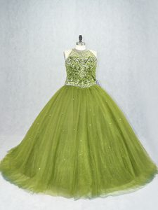 Amazing Olive Green Sleeveless Tulle Brush Train Lace Up 15 Quinceanera Dress for Sweet 16 and Quinceanera