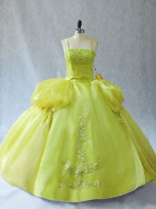 Sleeveless Floor Length Appliques Lace Up Sweet 16 Dresses with Yellow Green