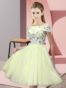 Fancy Knee Length Yellow Dama Dress for Quinceanera Tulle Short Sleeves Appliques