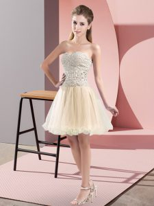 Sweetheart Sleeveless Zipper Homecoming Party Dress Champagne Tulle