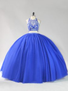 Sleeveless Backless Floor Length Beading Quinceanera Dress