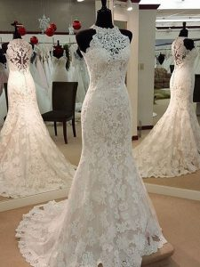 Sleeveless Lace Brush Train Clasp Handle Wedding Dresses in White with Lace