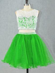 Scoop Sleeveless Organza Lace and Appliques Zipper