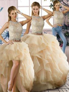 Vintage Champagne Quinceanera Dress Sweet 16 and Quinceanera with Beading and Ruffles Scoop Sleeveless Zipper