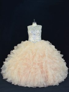 Champagne Sleeveless Organza Lace Up Quince Ball Gowns for Sweet 16 and Quinceanera