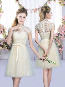 Elegant Cap Sleeves Lace Up Mini Length Lace and Bowknot Court Dresses for Sweet 16
