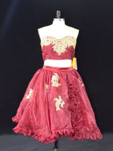 Edgy Wine Red Sleeveless Appliques and Ruffles Mini Length Homecoming Dress