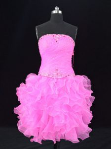 Simple Pink Ball Gowns Organza Strapless Sleeveless Beading Lace Up Evening Dress